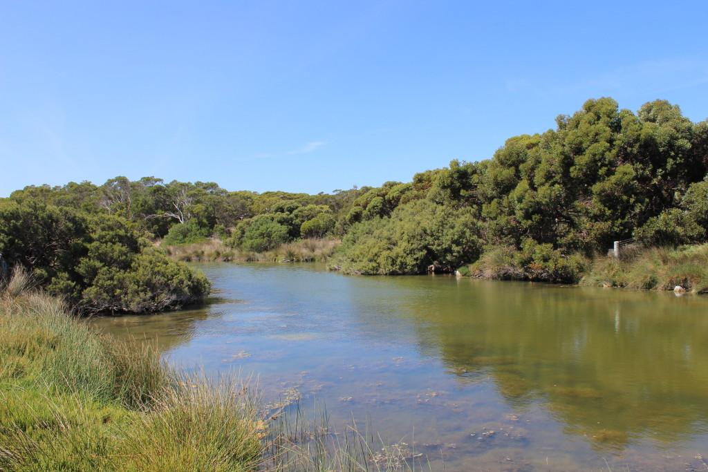 Salt Creek at Salt Creek