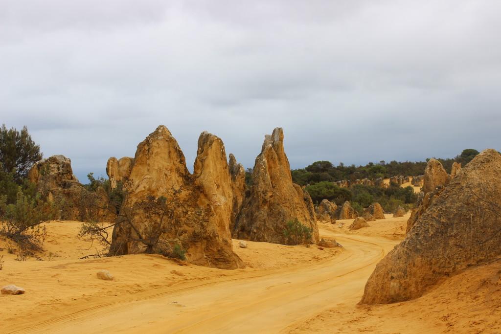 Pinnacles at The Pinnacles Desert