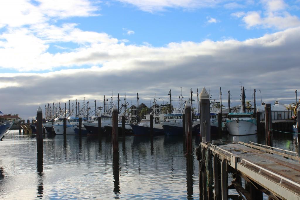 Fishing Boats at Port Lincoln