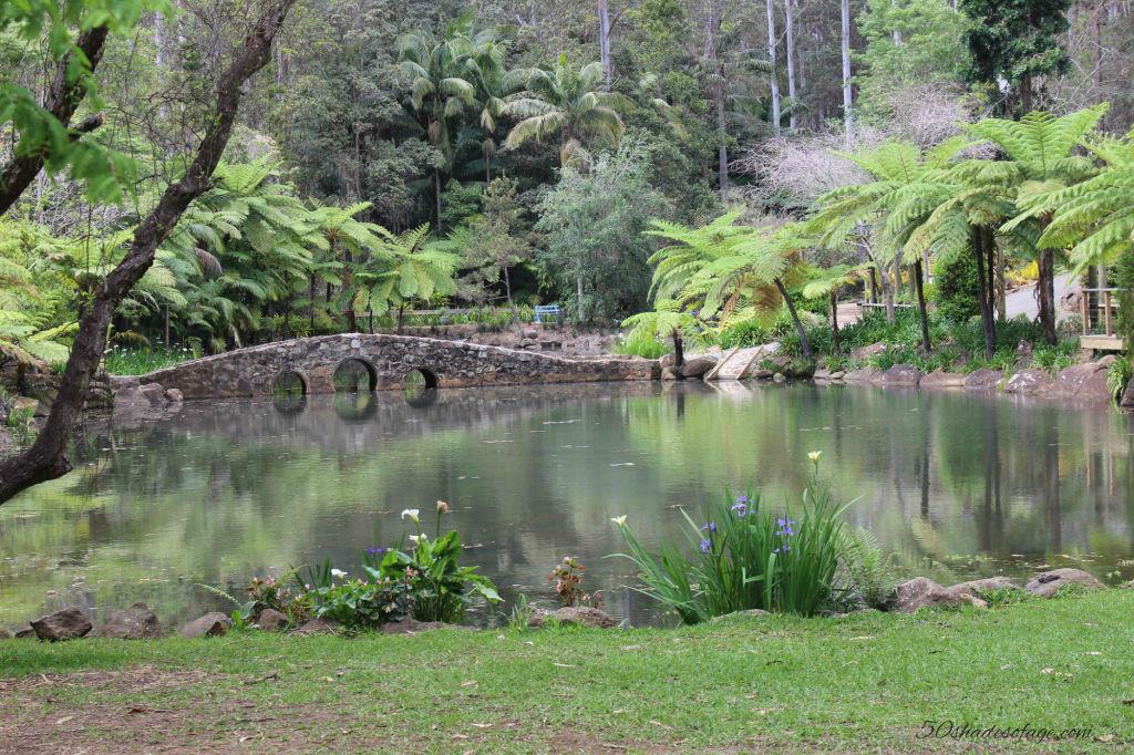 Mt Tamborine Botanical Gardens
