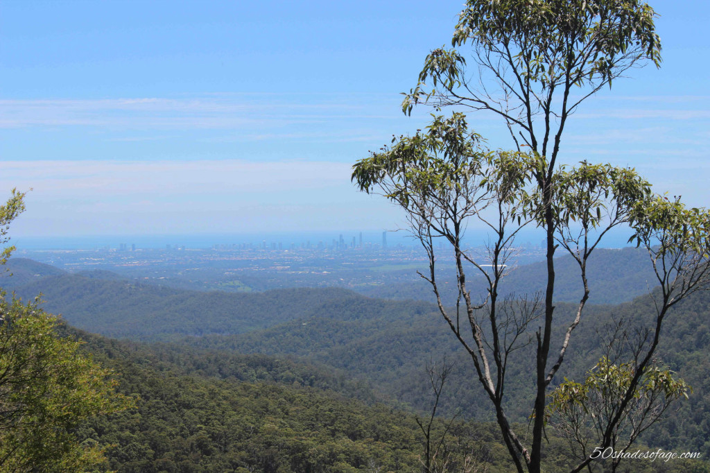 Views back over the Gold Coast from Springbrook