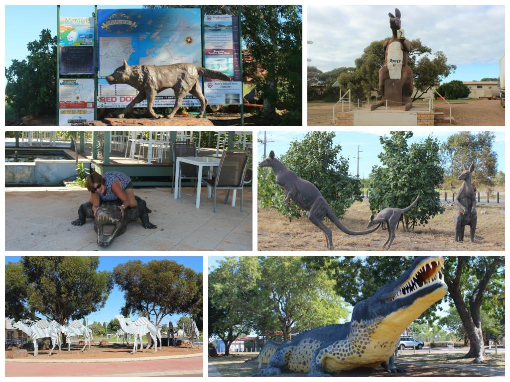 Some of our Aussie Animals