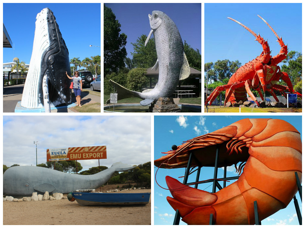 Some of our Marine Creatures