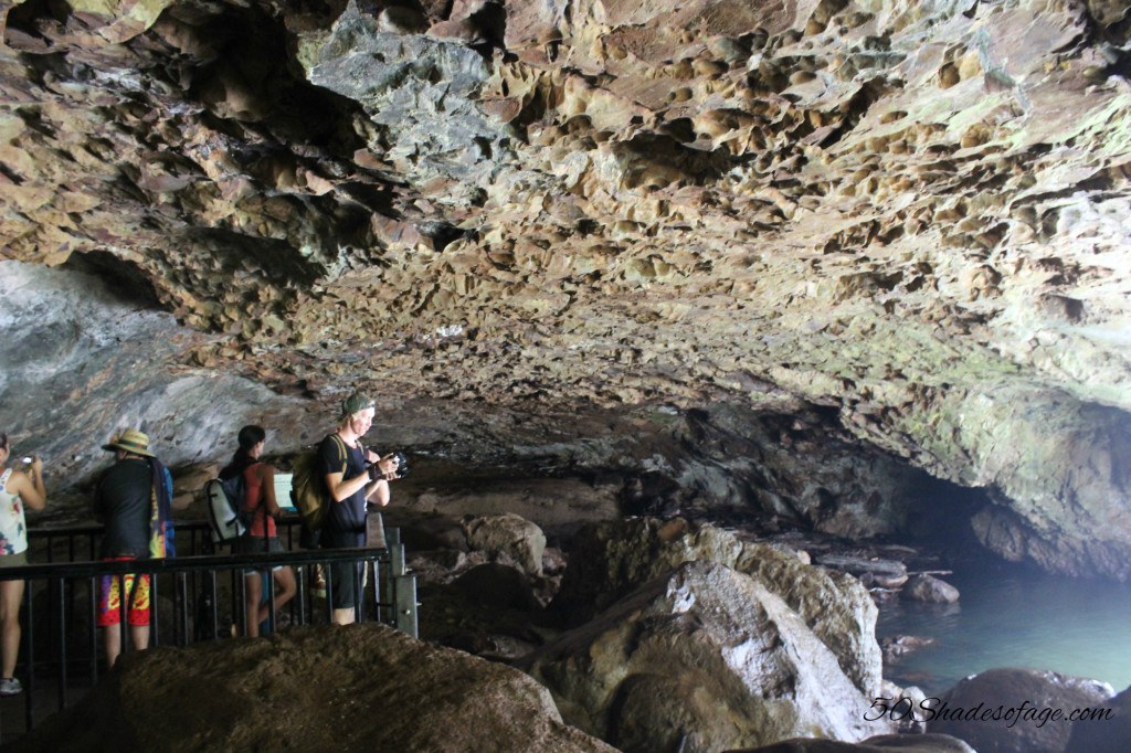 Glow Worm Cave, Natural Bridge