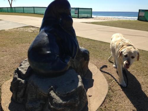 The Sea Lion Sculpture at Miami Beach