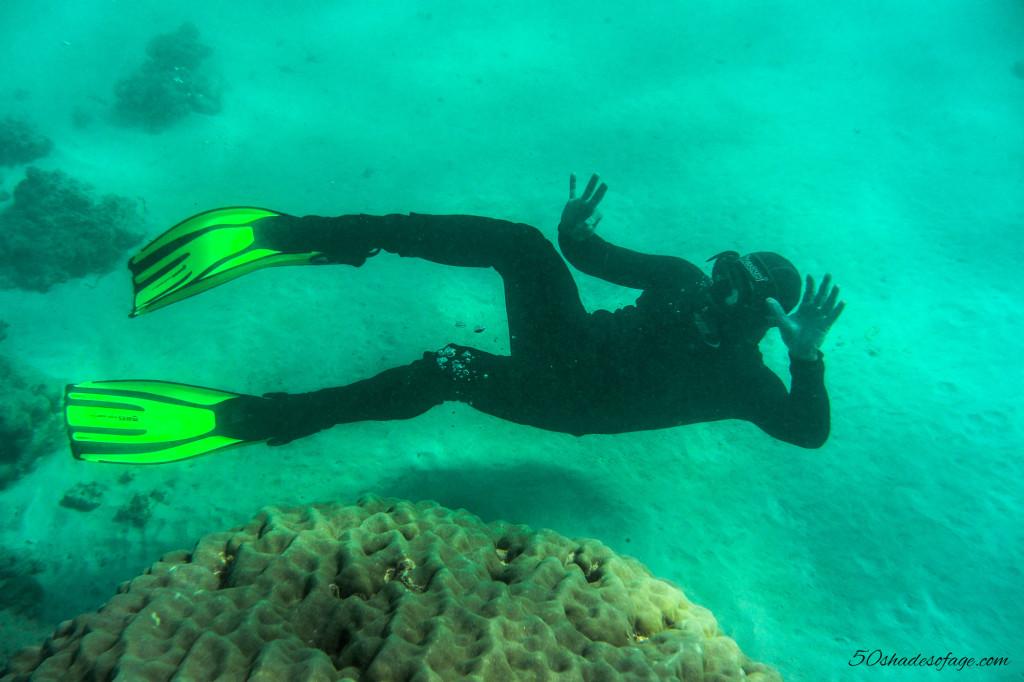 Snorkelling on the Ningaloo Reef