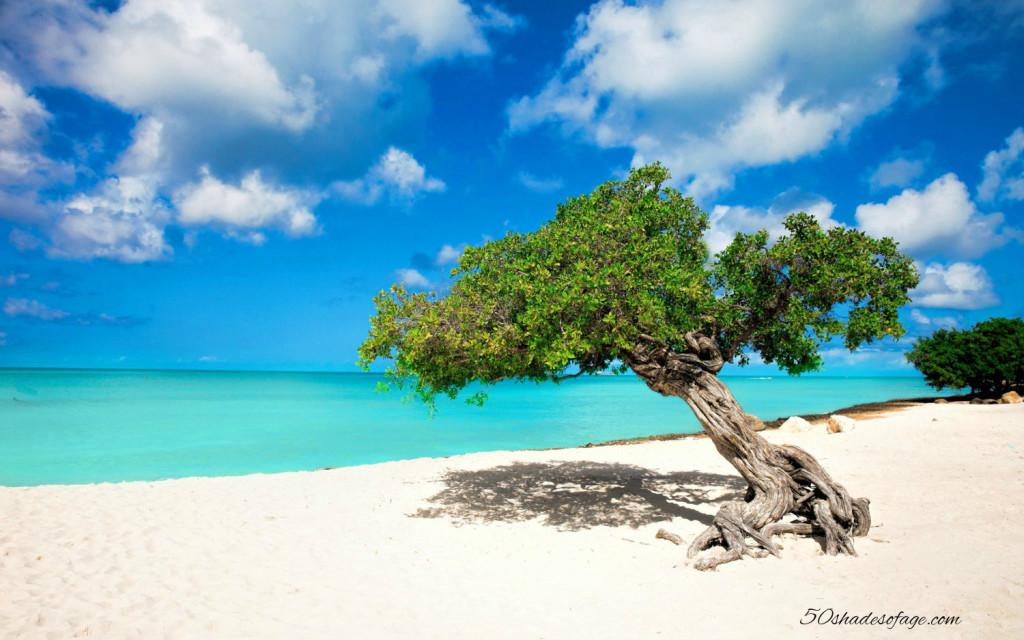White sandy beach in Aruba