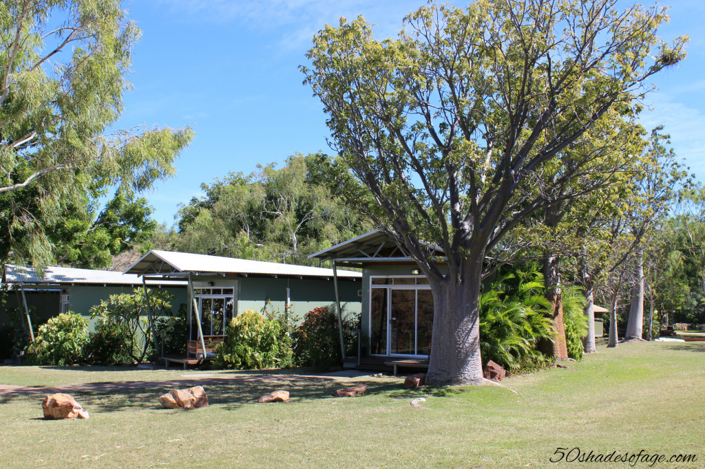 Boab at Lake Argyle Caravan Park