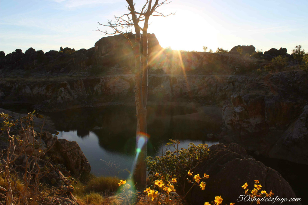 Small Boab at Sunset at RAAF Quarry near Fitzroy Crossing