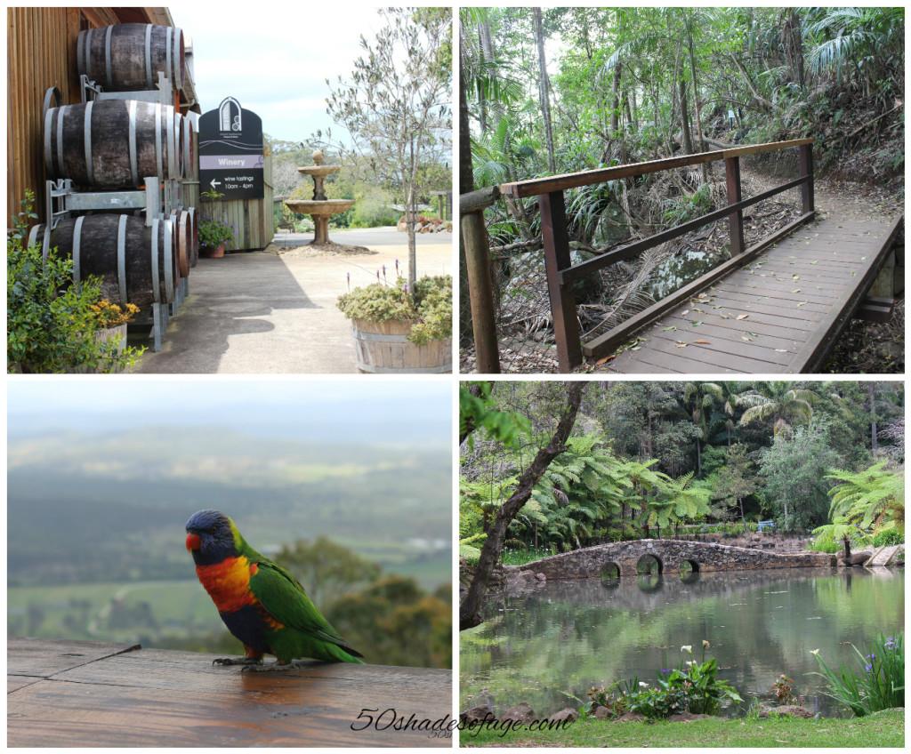 Tamborine Mountain, Gold Coast Hinterland