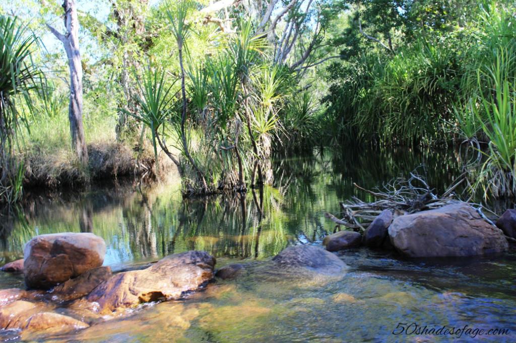 Pentecost River, El Questro