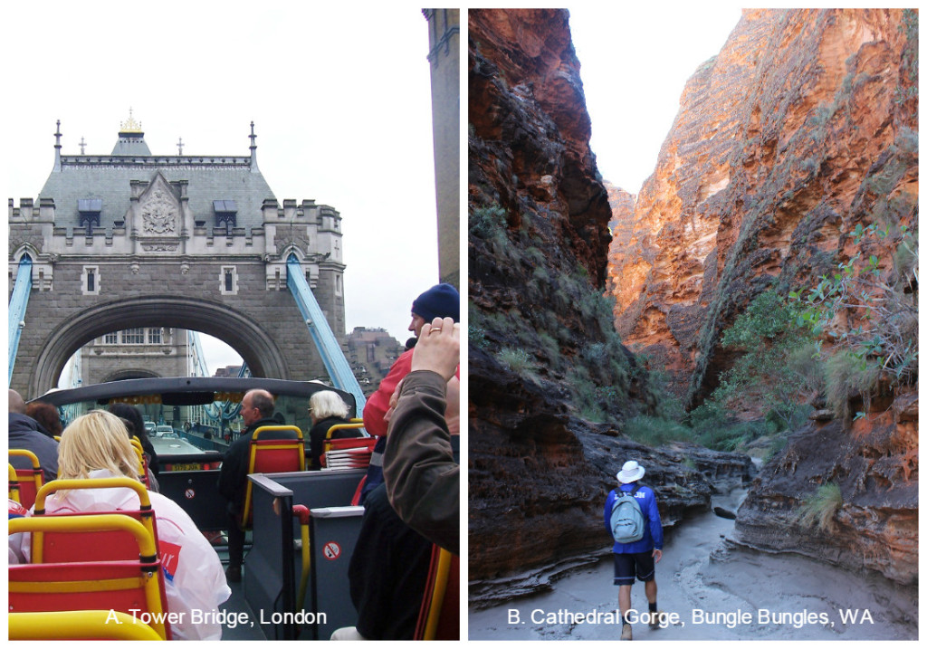 A. London on a Double Decker or B. Hiking in The Bungles Bungles