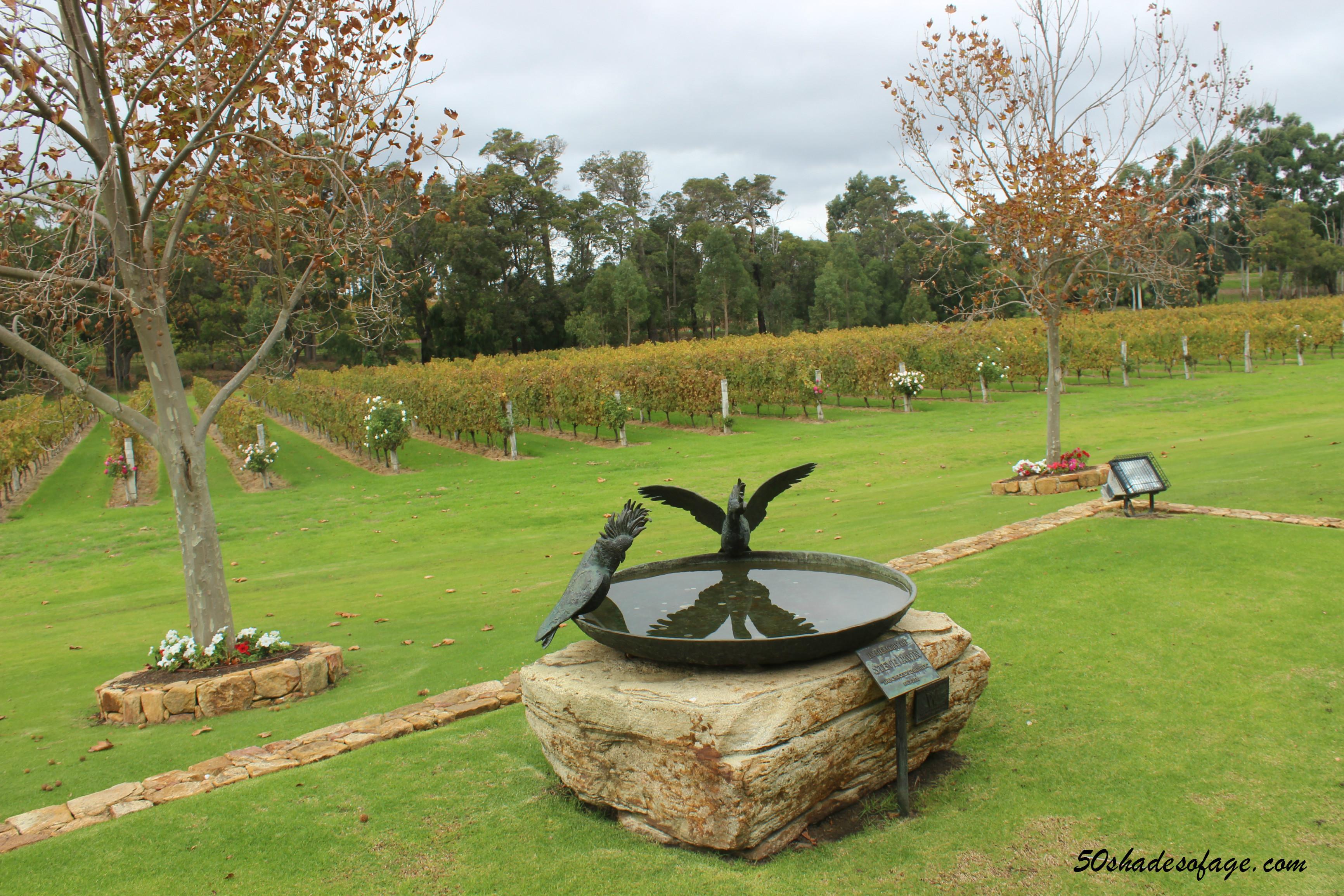 Winery in Margaret River Region
