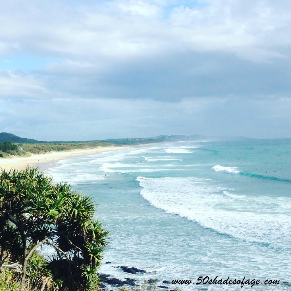 Dog Friendly Beaches Auckland