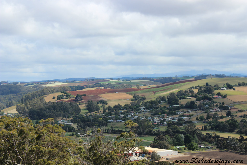 Views from Brady's Lookout over Tamar Valley Farmlands