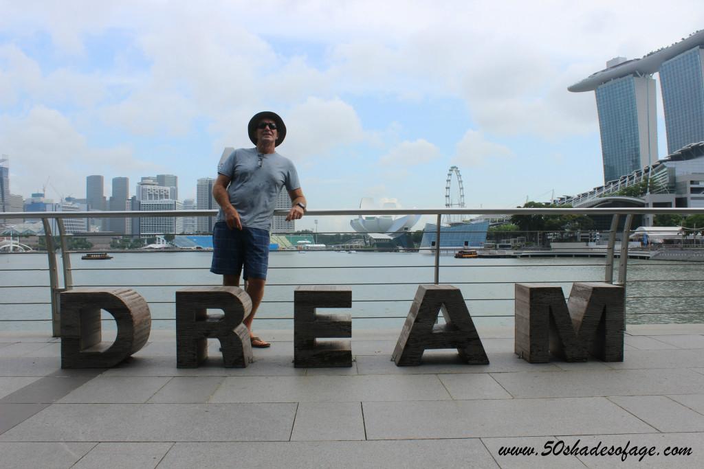 Singapore Dream