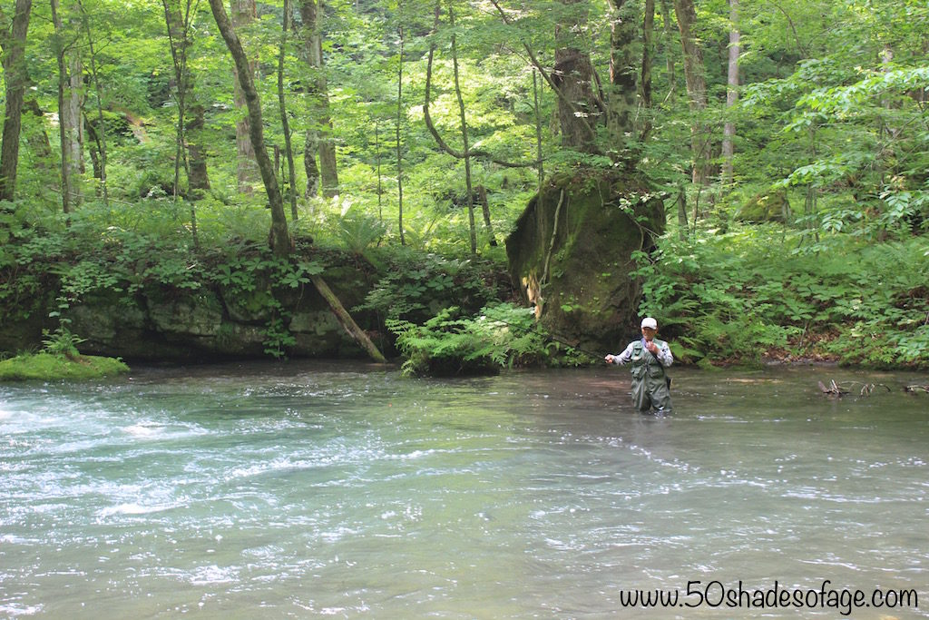 Trout Fishing in the Oirase River, Aomori