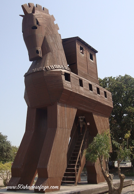 The famous Trojan Horse Replica at Troy