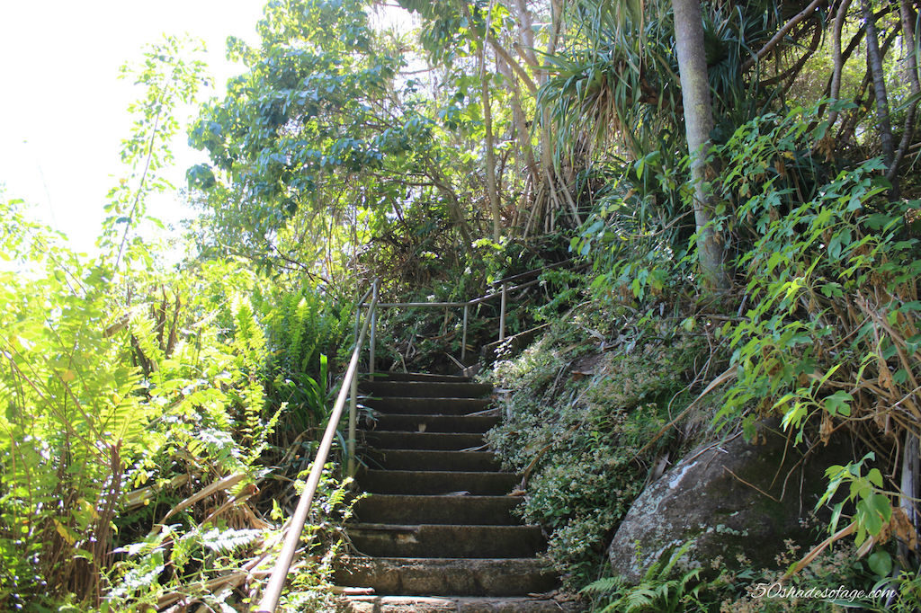 Steps to the Lookout at Greenmount Point