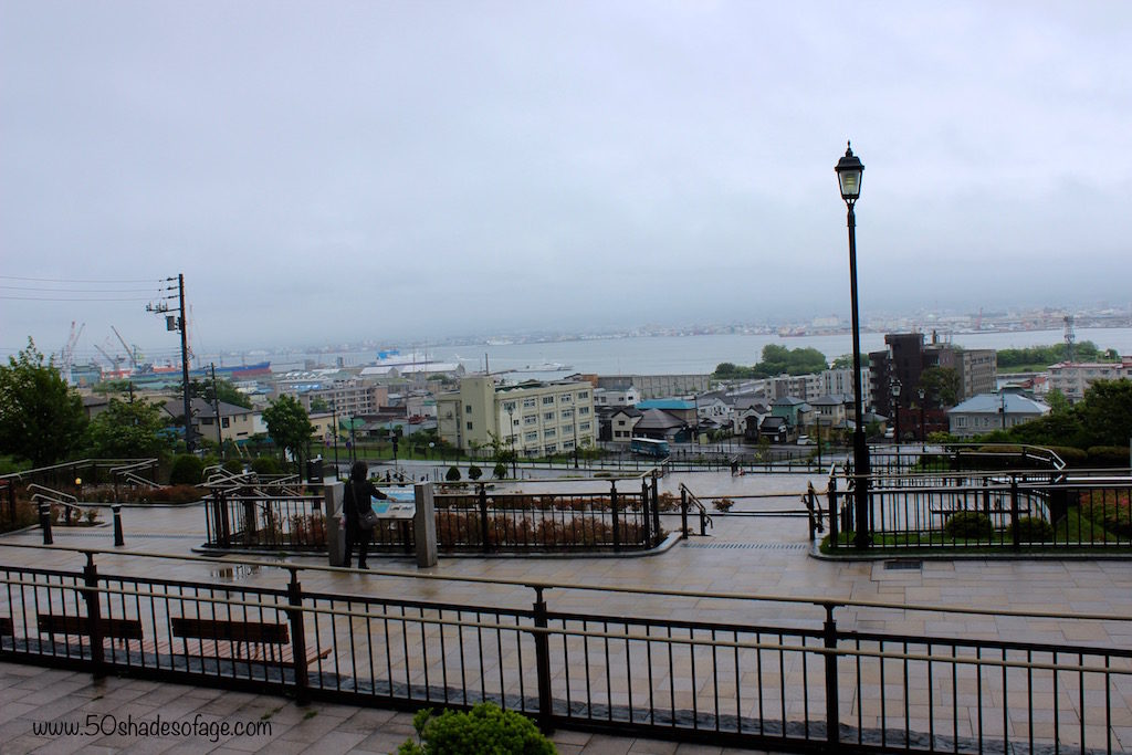 Views over Hakodate City and Port