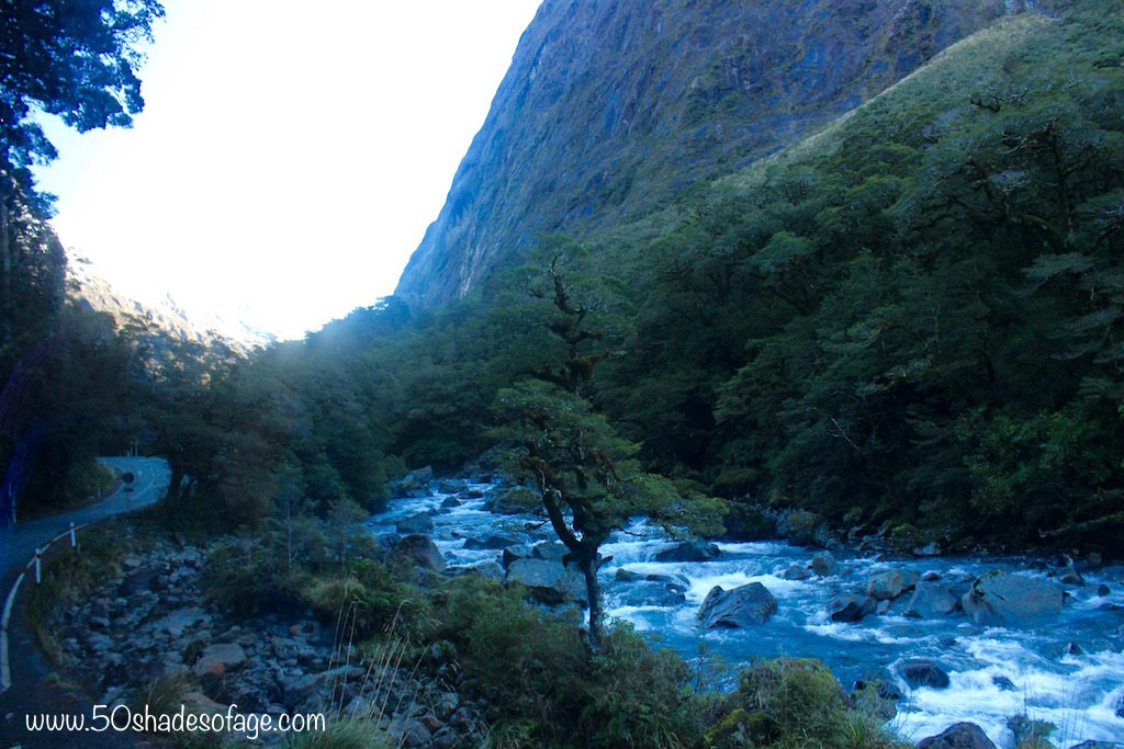 Mountain River on the Milford Road