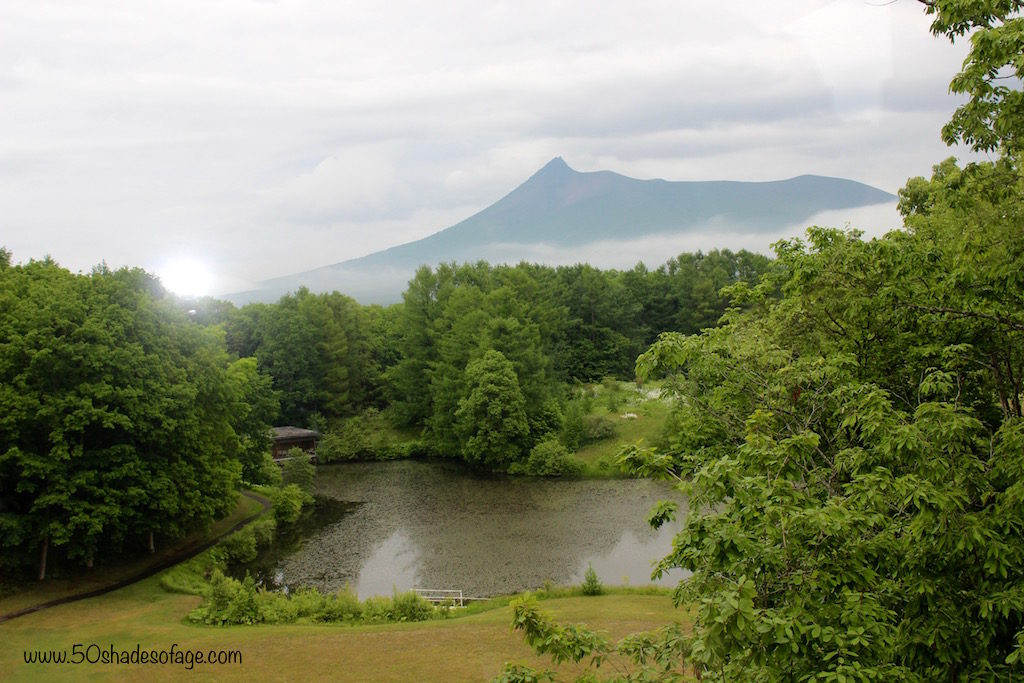 Views from the Restaurant at the Prince Hotel Hakodate-Onuma