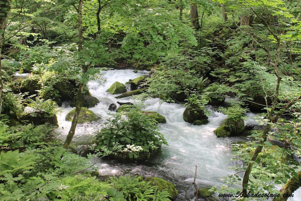 Oirase Gorge