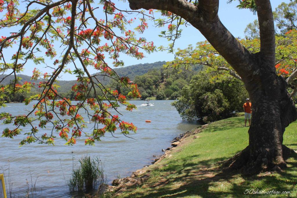Tweed River at Tumbulgum