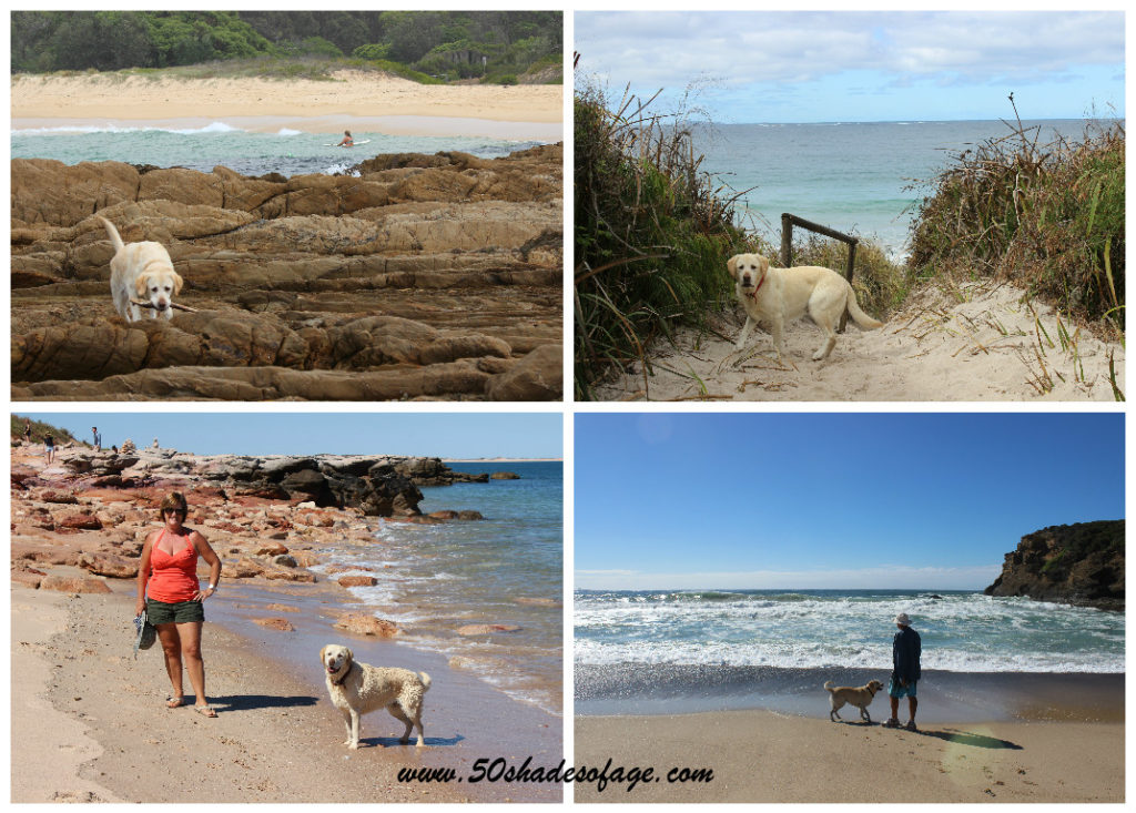 Jada exploring her surrounds at Dalmeny NSW, Cosy Corner Beach, Albany WA, Quondong, Cape Leveque WA and