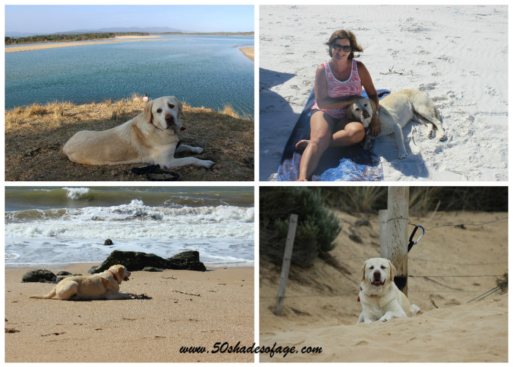 Jada at Mallacoota Vic, on the beach at Duke of Orleans Bay WA, Hearsons Cove, Karratha WA and Lakes Entrance Vic