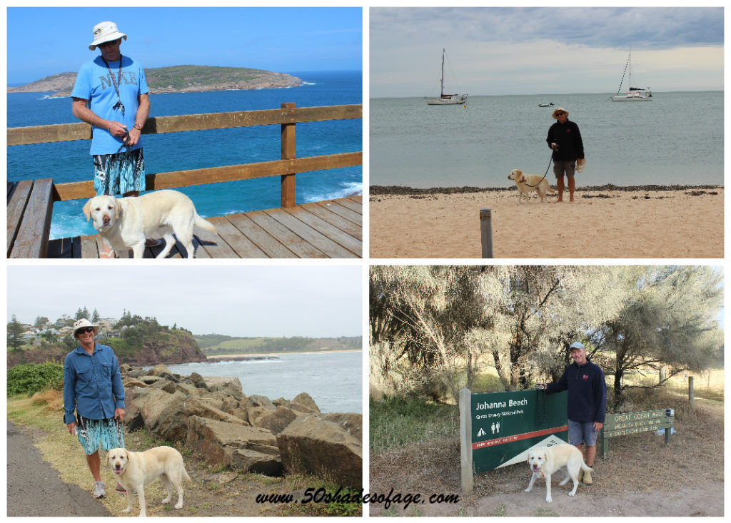 Jada on one of her many walks at Esperance WA, Monkey Mia WA, Great Ocean Trail, Johanna Vic and