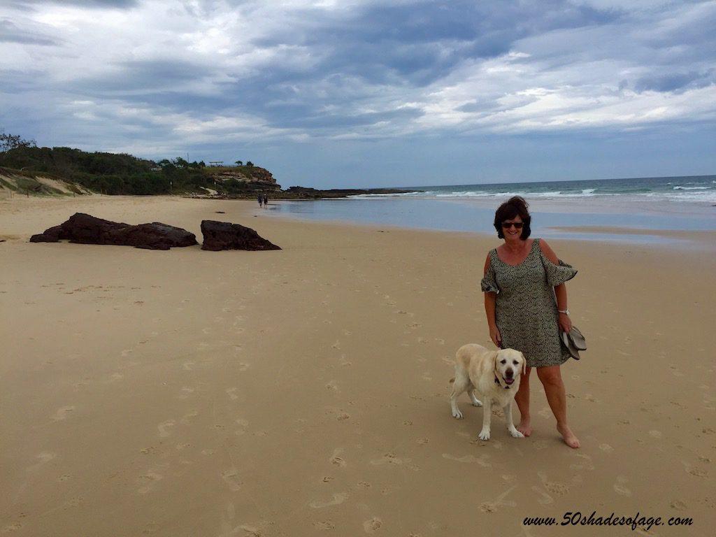 Noosa Dog Friendly Beaches