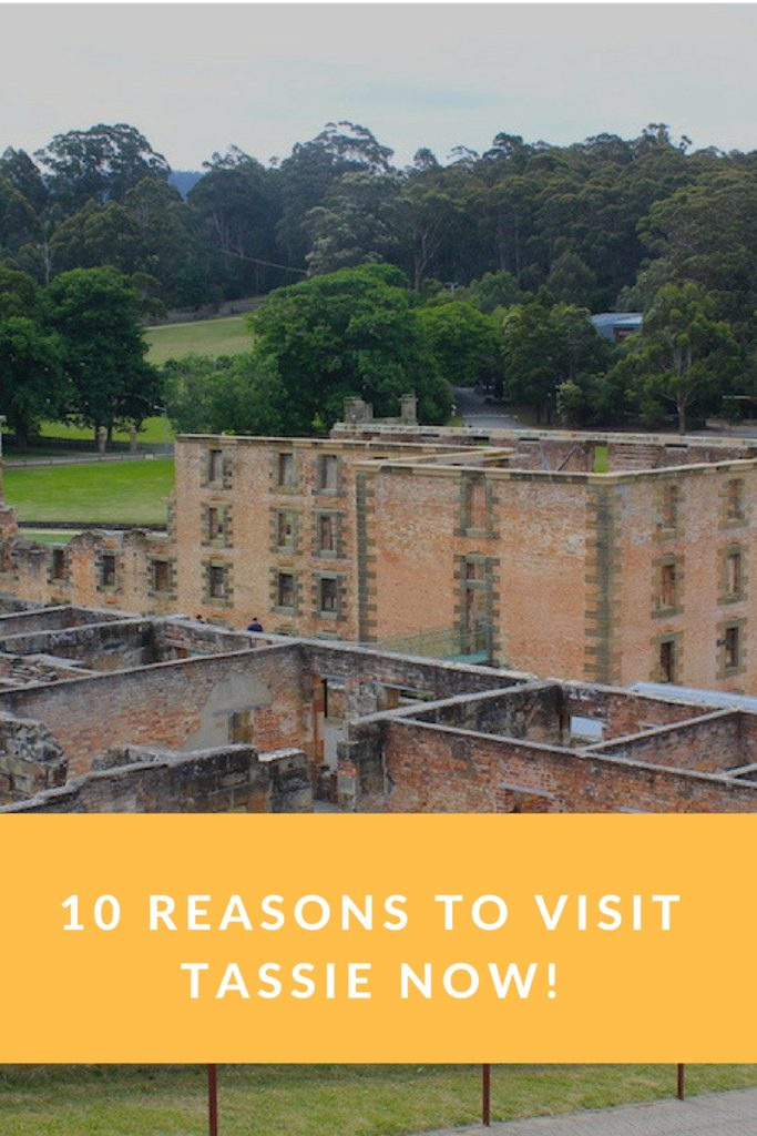 10 Reasons to Visit Tassie Now!