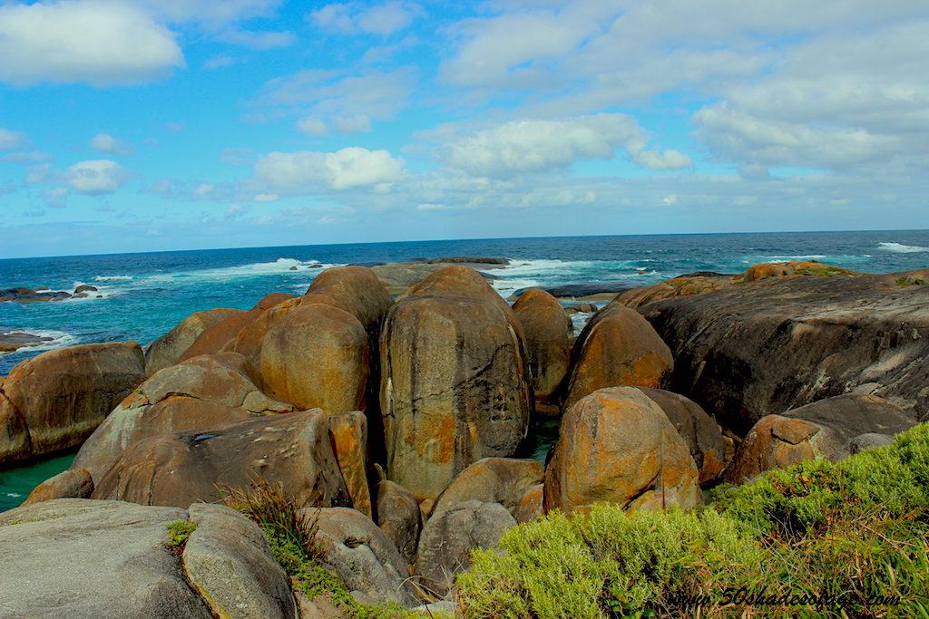 The large Elephant Shaped Boulders at Elephant Cove