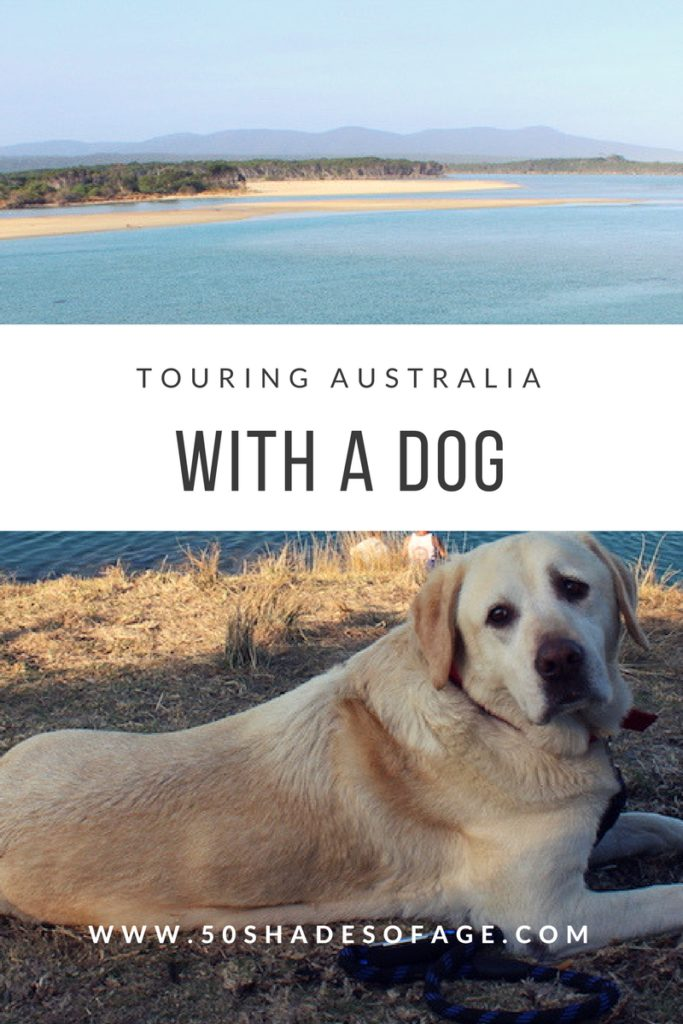 Touring Australia with a Dog