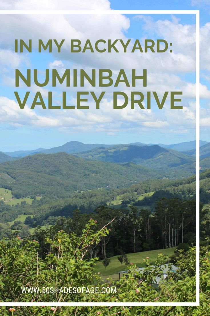 In My Backyard: Numinbah Valley Drive
