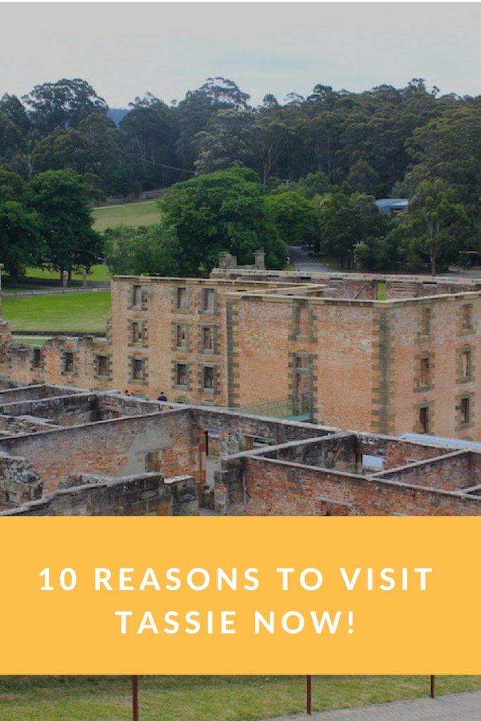 10 Reasons to Visit Tassie Now!