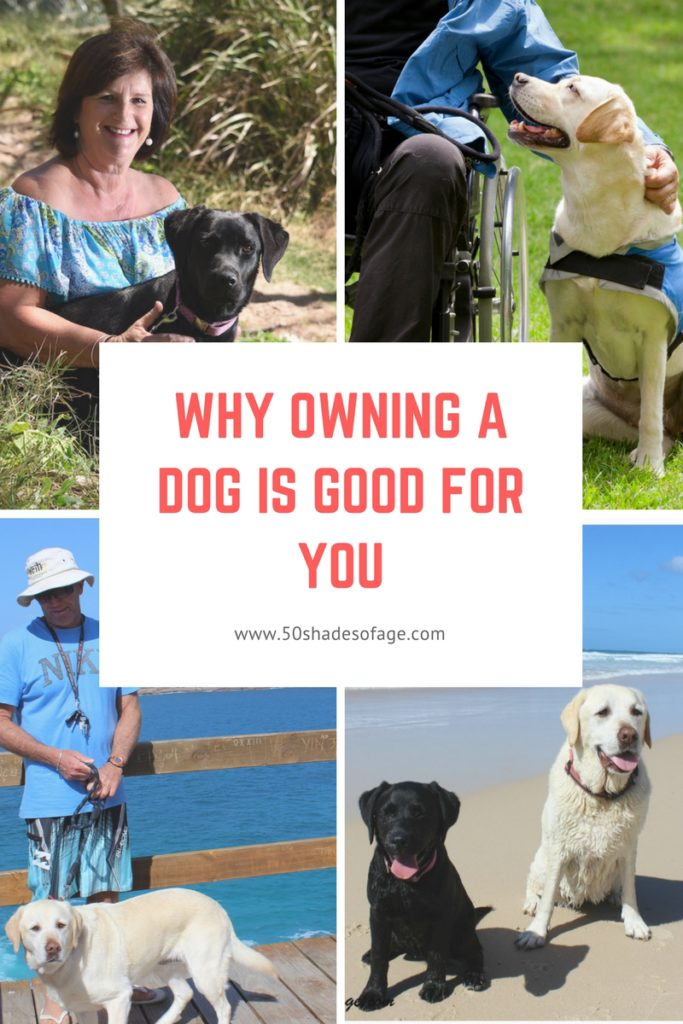 Why Owning a Dog is Good For You