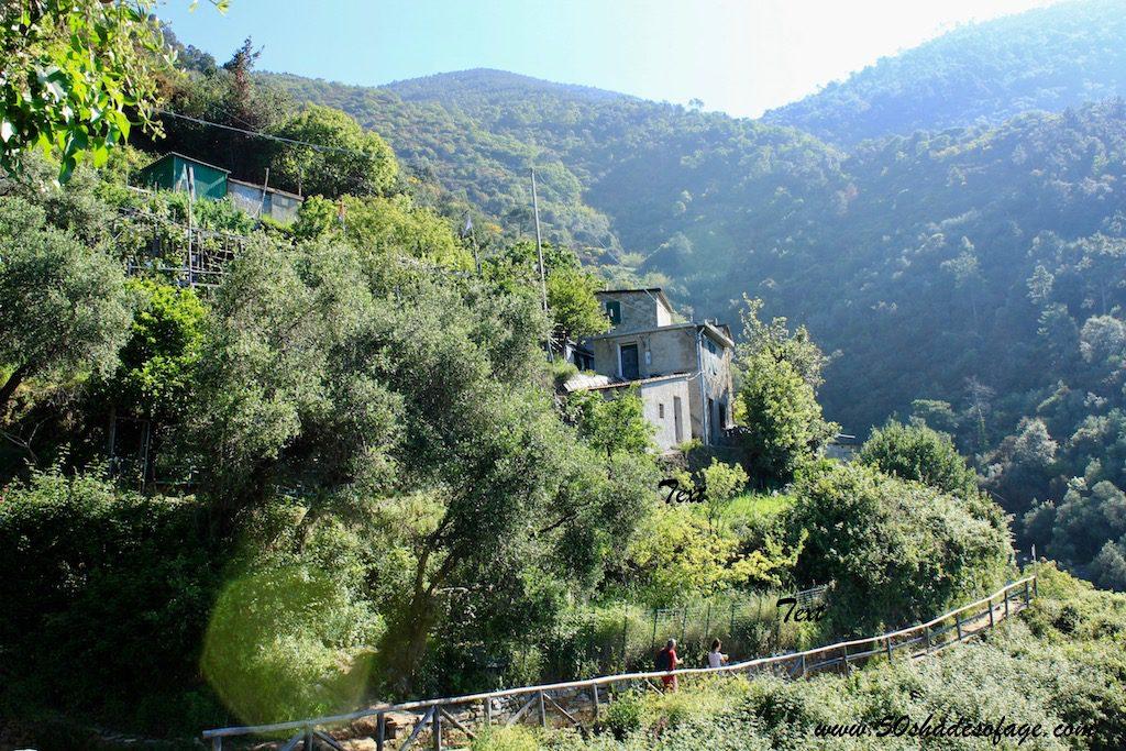 The All-Encompassing Cinque Terre