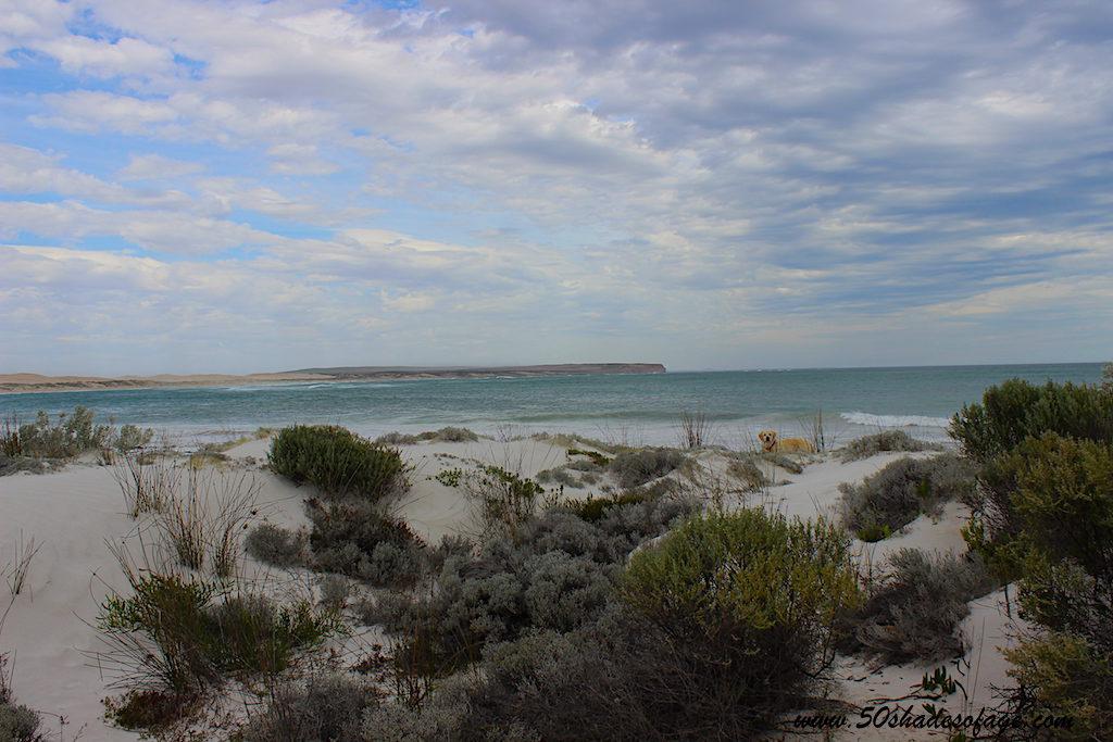 Travel Around Australia in 185 Days: South Australia