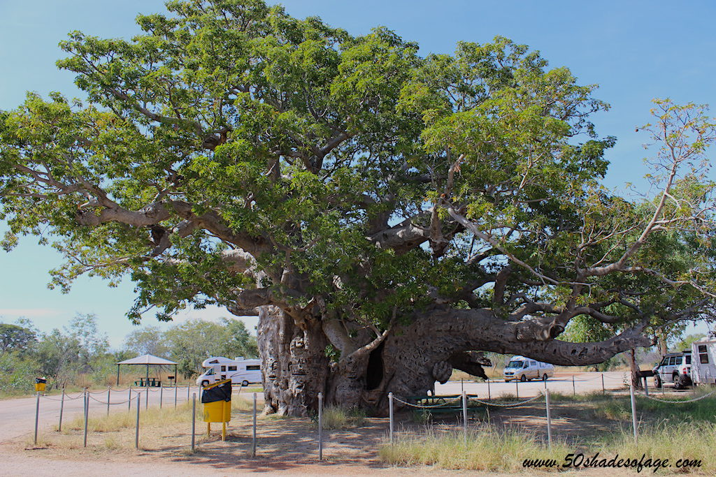 Travel Around Australia in 185 Days: North West Australia & The Kimberley