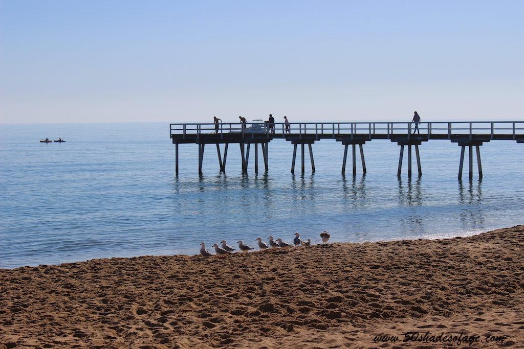 Travel Around Australia in 185 Days: Coastal Queensland