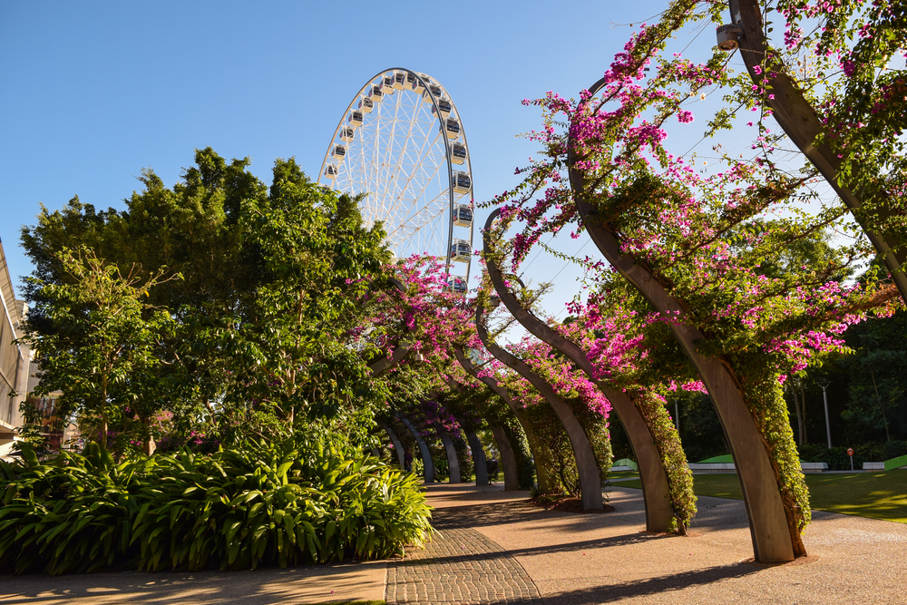 Things to do in Brisbane for visitors of all ages