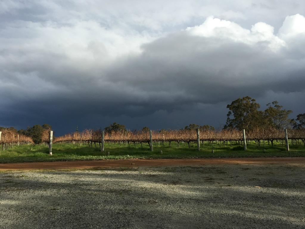 Best Wine Regions of Australia
