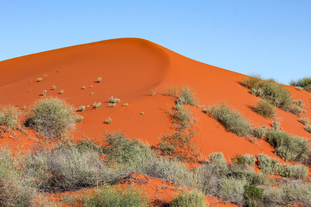 Favourite Things About Australia