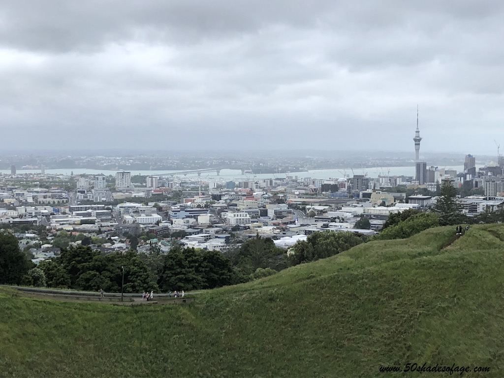 New Zealand Cruise Recap