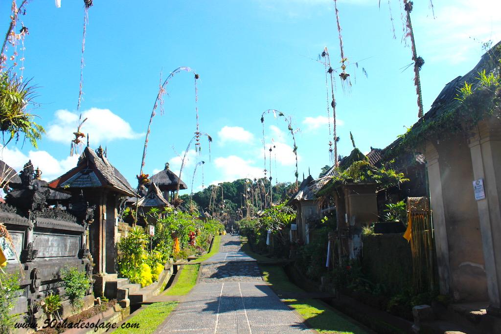 Holistic, Healthy and Healing Bali