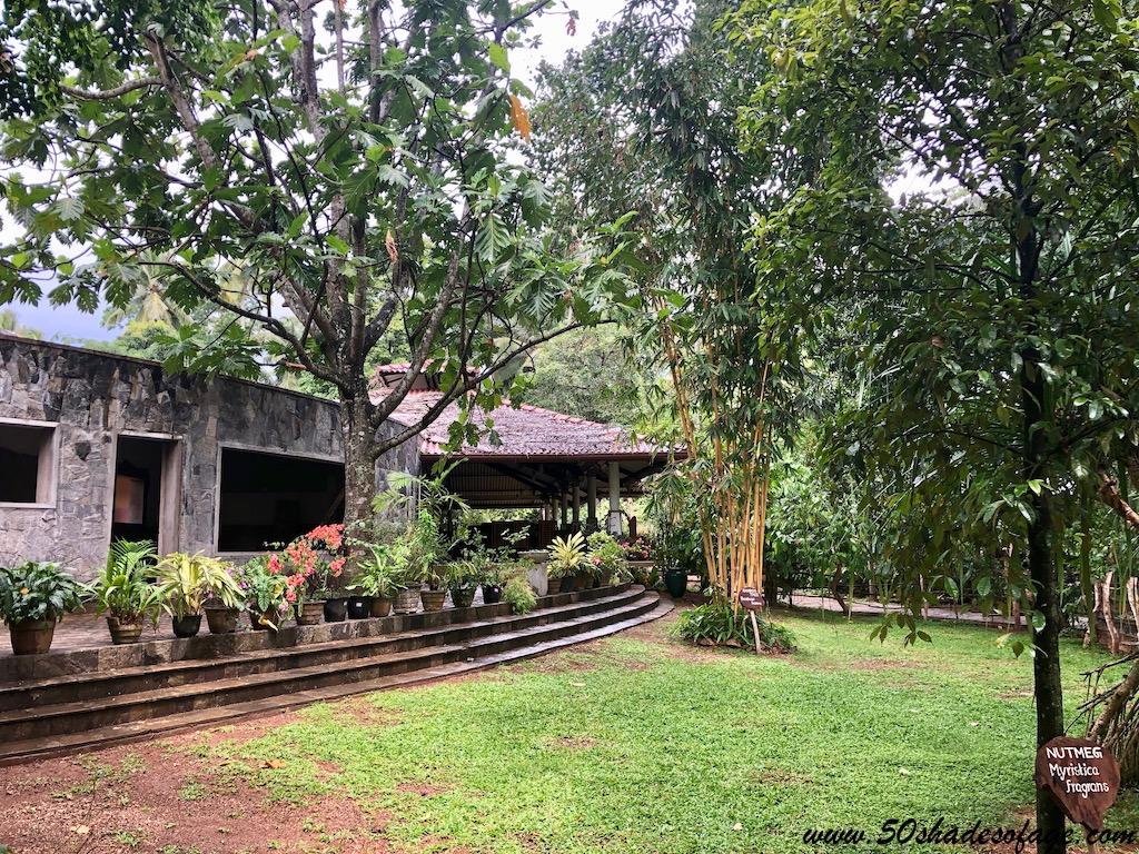 7 Days in Sri Lanka