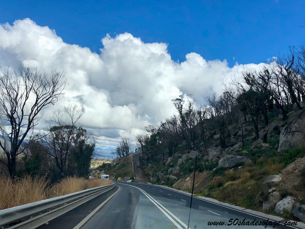 Road Trip on the New England Highway