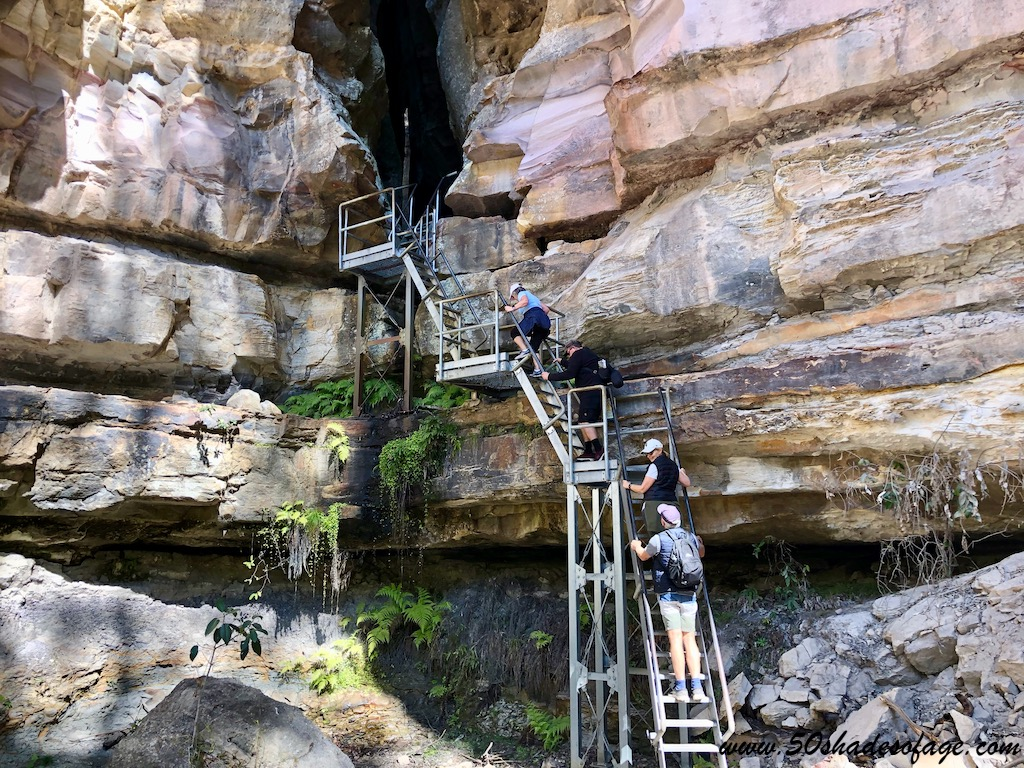 Camping and Hiking in Carnarvon Gorge